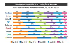 Very Cool Graphic - seeing who uses what Social Media Platform.