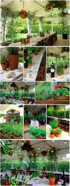 The Perfect Italian Garden Party. This is totally my dream for my 50th birthday. I have always wanted to have a long lunch, Italian style.