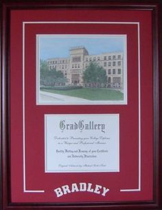 Quadruple Diploma Frame Certificate Frames Home Office