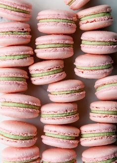 Classic French macarons are given a modern twist with the addition of matcha. Matcha (green tea) ganache and sweet raspberry fill the centers of these delicate pastries. Food Recipes For Dinner, Food Recipes Deserts Brownie Desserts, Mini Desserts, Easy Desserts, Delicious Desserts, Plated Desserts, French Macarons Recipe, French Macaroons, Raspberry Macaroons, Tea Recipes