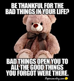 Wise Bear: Be thankful for the bad things in your life? Bad things open you to all the good things you forgot were there.