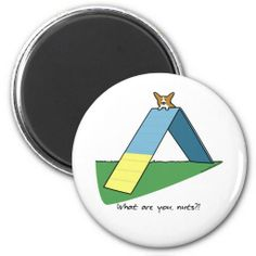 >>>Are you looking for          Funny A-Frame Corgi Agility Refrigerator Magnets           Funny A-Frame Corgi Agility Refrigerator Magnets in each seller & make purchase online for cheap. Choose the best price and best promotion as you thing Secure Checkout you can trust Buy bestThis Deals  ...Cleck Hot Deals >>> http://www.zazzle.com/funny_a_frame_corgi_agility_refrigerator_magnets-147340008657845496?rf=238627982471231924&zbar=1&tc=terrest