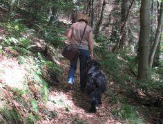 Frau Meyer mit Hund und Picknicktasche