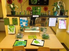 Provocation for book, The Green Line by Polly Farquharson (from Sunflower Jr. Preschool via Twitter: @sunflowpre; https://twitter.com/sunflowpre?cn=cHN0Zg%3D%3D&refsrc=email)