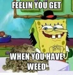 The Feeling you get, When you got #weed after a long time...! #weedlife #cannabis #weedculture #marijuana
