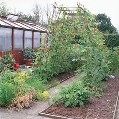 Edible Landscaping: Kitchen Garden   jardin potager   bauerngarten   köksträdgård Love the bean trellis over the walkway