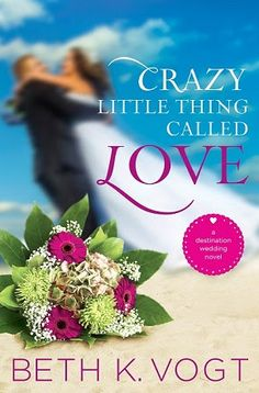 Crazy Little Thing Called Love {Litfuse Review}  Join Logan and Vanessa as they navigate their divorce and seeing each other again for the first time.  Can Vanessa learn to trust and love?