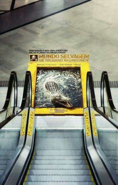 Guerrilla advertising from National Geographic in Brazil. This is a good piece of advertising because people can't ignore it if it's in their way. This will get people talking and sometimes word of mouth is the most effective method of marketing. Guerilla Marketing, Street Marketing, Experiential Marketing, Creative Advertising, Guerrilla Advertising, Advertising Campaign, Advertising Design, Targeted Advertising, Floor Graphics