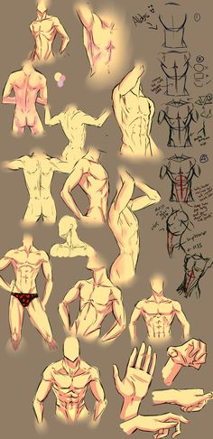 More anatomy tips by =moni158 - Not our art. Used for reference purposes only for students of the D.E.A.D. Academy. www.deadacademy.com