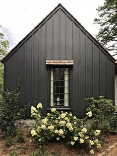Dark clapboard exterior is fantastic Black House Exterior, Cottage Exterior, House Paint Exterior, Exterior Paint Colors, Exterior House Colors, Paint Colors For Home, Exterior Design, Siding Colors, House Siding