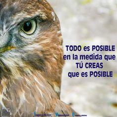 ¡Lo imposible solo cuesta un poco mas! #imagenesysoluciones #etiquetandoalmundo #etiquetatucalidad