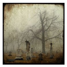Title: Stone Lady  Size: 8 inches by 8 inches/Black Borders Style: Through The Viewfinder/Grungy    Her eerie figure stands in the foggy graveyard