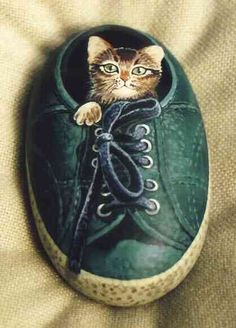 Painted Rock - Cat Inside Shoe