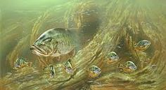Image result for bass painting