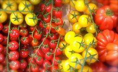 Tomates, Poivrons, Légumes, Alimentaire