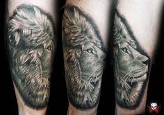 lion by Selejt on DeviantArt