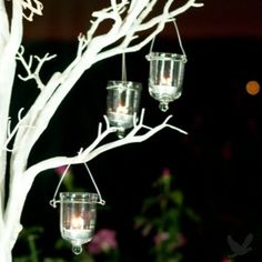 If you go with a wintery theme for the wedding you could get big cool trees (6'+) and hang votives from them like these. Way to make the room cozy and create ambience...