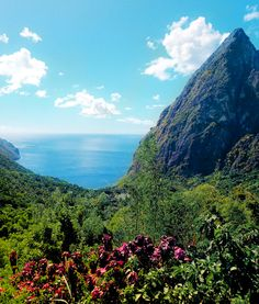 Lush rainforests surround the volcanoes of St. Lucia.