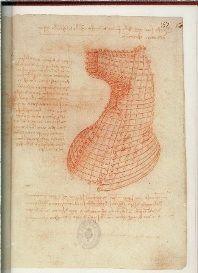 Non era leggenda il leggendario cavallo di Leonardo