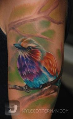 Colorful Bird Tattoo Designs - Best Tattoos Ever - Tattoo by Kyle Cotterman - 01