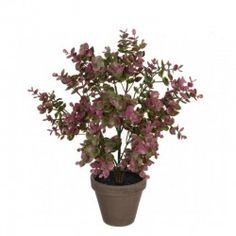 Eucalipt planta artificiala violet Plant