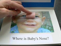 DIY Baby Body Parts Flap book