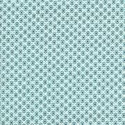 """Kimberly Kight Homebody - Boxers (Aqua) Kim Kight's debut collection for Cotton + Steel  100% cotton, quilting weight, 44/45"""" wide"""