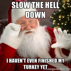 Slow the hell down Santa meme...this one might be my seasonal fave.  Thanksgiving funnies. #HolidayHumorITPR