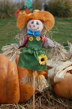 How to Make a Homemade Scarecrow? Scarecrows are awesome decorations, and they make a fun project for the whole family. You can easily make a scarecrow out of scraps to scare up some fun in your own front yard. Make A Scarecrow, Scarecrow Crafts, Imprimibles Halloween, Manualidades Halloween, Autumn Crafts, Holiday Crafts, Fall Halloween, Halloween Crafts, Halloween Stuff