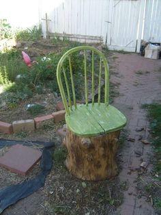Chair seat on old stump.