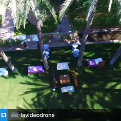 Had to repost this awesome aerial drone vid from @lavideodrone #beautiful #wedding #palm #trees #resort #scottsdale
