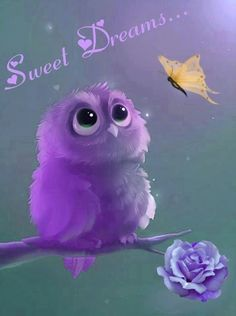 Sweet illustration of a purple owl. Good Night Wishes, Good Night Sweet Dreams, Purple Owl, Purple Haze, Beautiful Owl, Nighty Night, Owl Art, All Things Purple, Purple Stuff