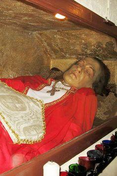 St. Gerard Magella