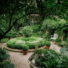 Kleiner Garten mit Inselbeet
