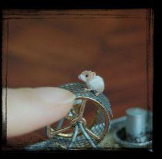 OOAK Realistic ~ Hamster ~ Handmade Miniature Dollhouse 1:12 sculpture