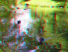 REFRECTION - Ducks (3D - anaglyph) 3d Pictures, 3d Glasses, View Photos, Ducks, Red And Blue, 3 D, Photography, Painting, Image