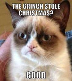 The Grinch stole Christmas?...good ~Grumpy Cat hahaha Grumpy Cat is just soo funny!!!