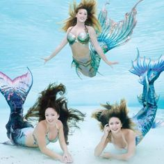 11 great day trips from Orlando, Florida. Whether you're passing through the state of Florida or need a break from all the amusement parks in Orlando, you can find great day trip ideas. Siren Mermaid, Mermaid Cove, Mermaid Diy, Scary Mermaid, Mermaid Beach, Mermaid Photo Shoot, Mermaid Pictures, Real Mermaids, Mermaids And Mermen