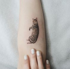 Realistic Cat Tattoo by Sol Art