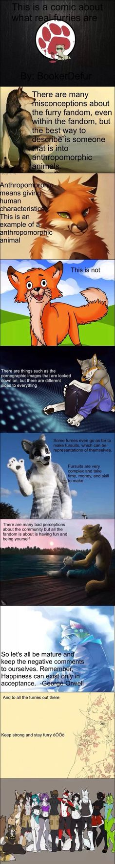 I am not a furry, but we need to all keep this in mind. Actually learn what the fandom is before you judge it.