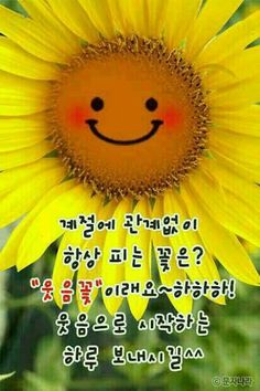 Korean Quotes, Cute Stickers, Happy Day, Best Quotes, Language, Inspirational, Learn Korean, Best Quotes Ever, Languages