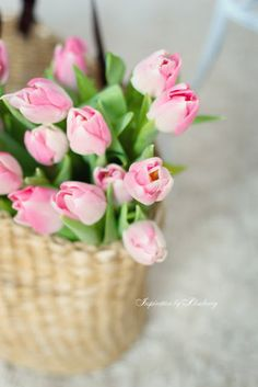 ♔ Spring tulips