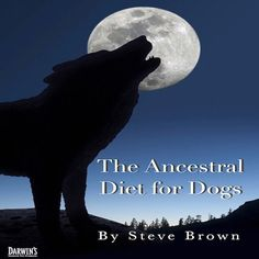 The Ancestral Diet for Dogs - What is it? Find out on our blog by clicking the link in our bio.