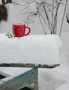 What taste good on a cold snowy day, a cup of hot chocolate.