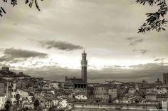 Un suntuoso b/n dagli Orti dei Tolomei - Foto di Marcello Novelli - #Siena #Toscana #OrtiDeiTolomei #PanoramicaDiSiena
