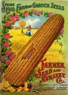 "An intrepid farmer wades through a field of chest-high Roosevelt Oats on the front of the Farmer Seed & Nursery company 1910 spring catalog.  Also featured was an ""actual size"" ear of Golden Jewel corn, along with some clover for visual interest.  Farmer Seed & Nursery originated in Faribault, MN in 1888.  Andersen Horticultural Library has a collection of their vintage catalogs."