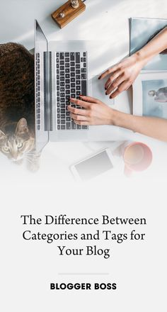 The Difference Between Categories and Tags for Your Blog