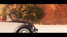 """Bufé inesperado from Beetle Stories Un vídeo de Marcos Capello, Manuel García y Pere Rosell Codina. Basado en la historia """"Huevos Milenarios"""", de María Borrás."""