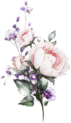 Popular and Trending flower Stickers on PicsArt - Zeichnung Watercolor Flower Background, Floral Watercolor, Watercolor Paintings, Simple Flower Drawing, Flower Art, Flower Outline, Floral Drawing, Flower Images, Flower Aesthetic