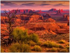 GELATO GLOBAL PRINT - Landscape Aluminum Print - Navajo Nation's Monument Valley Park - Utah & Arizona USA Monument Valley Park, El Yunque Rainforest, Arizona Usa, Us National Parks, Image Photography, Navajo, Travel Inspiration, Sunrise, Hunting